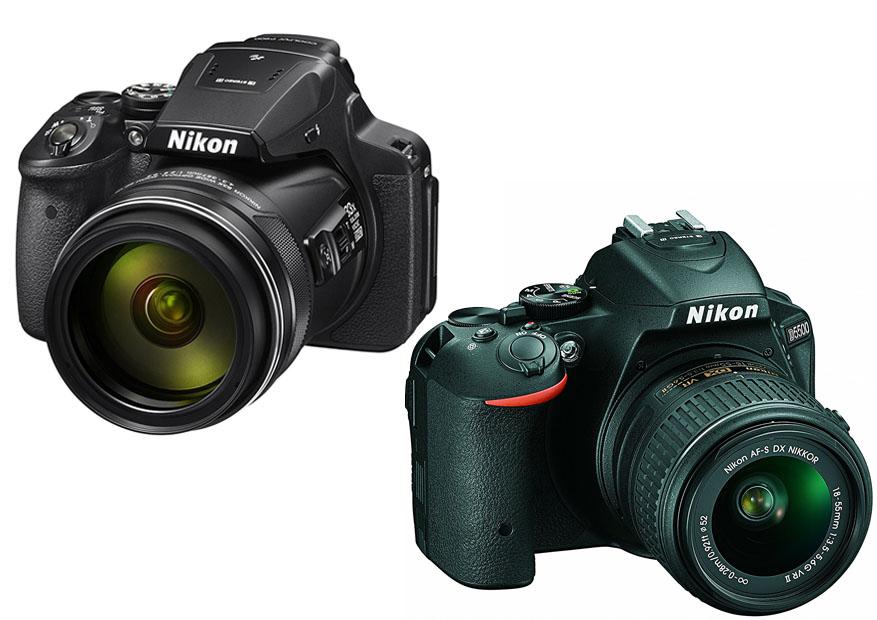 Nikon Coolpix P900 vs. Nikon D5500 1